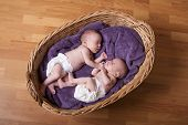 stock photo of identical twin girls  - Little newborn twins are sleeping in bed - JPG