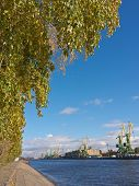 stock photo of sankt-peterburg  - autumn landscape in the port of Sankt - JPG