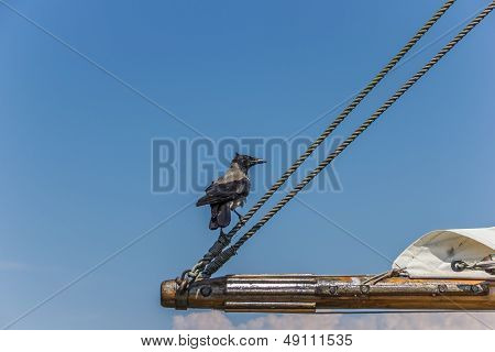 Black Crow Sitting On The Boom Of A Sailboat