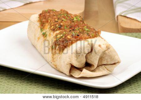 Fresh Mexican Burrito