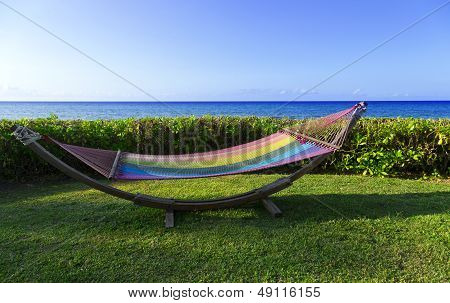 Hammock By The Se
