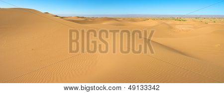 Majestic Dune Landscape