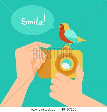 Vector Digital Camera And Cartoon Bird