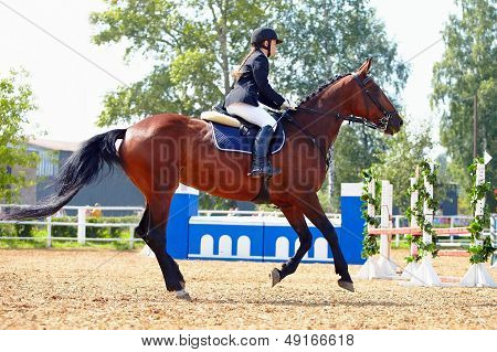 The Sportswoman On A Horse At Competitions.