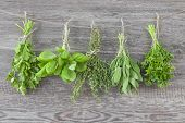 foto of salvia  - Fresh herbs hanging over a wooden background - JPG