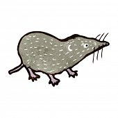 picture of shrew  - retro cartoon shrew - JPG