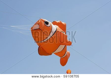 Orange And White Nemo Clownfish Kite Flys