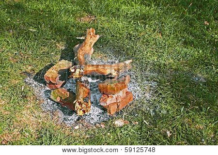 Remains Of A Bonfire On The Green Grass