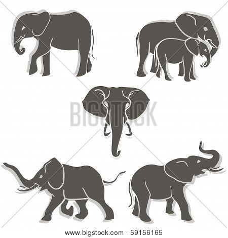 Set Of Elephants B&w