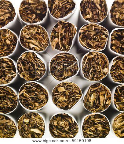 Large group of cigarettes full frame
