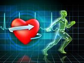 stock photo of cardiovascular  - Cardio exercise increases the heart - JPG