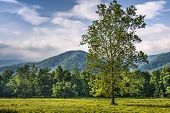 Cades Cove in the Smoky Mountains National Park near Gatlinburg, Tennessee.