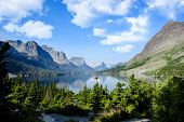 picture of mary  - Wild Goose Island St - JPG