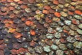 stock photo of red roof tile  - Old red and brown moss tile roof background great for texture - JPG