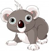 picture of koala  - Illustration of cute funny koala - JPG