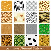 stock photo of cheetah  - easy to edit vector illustration of animal skin seamless pattern - JPG
