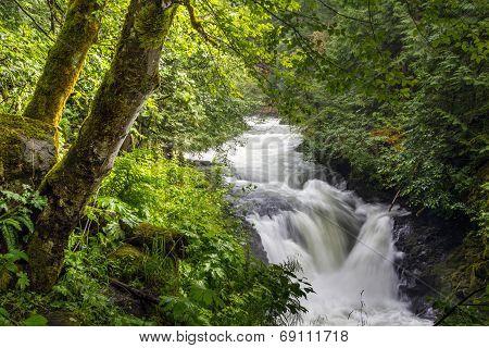 White Salmon River Falls