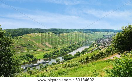 Moselle River With Vineyards On Hills, Germany