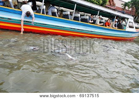 River Tour In Boat On Chao Phraya River In Bangkok
