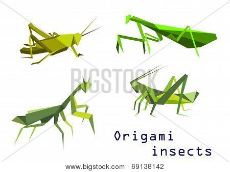 Green origami grasshoppers and mantis