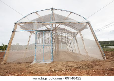 Net Greenhouse Cover Modern Clean And Good Vegetable And New Alternative Agricultural
