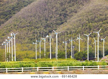 Landscape Of Eco Windmill Turbines  Fan In Agriculture Farm For Produce Clean Electric Power Against