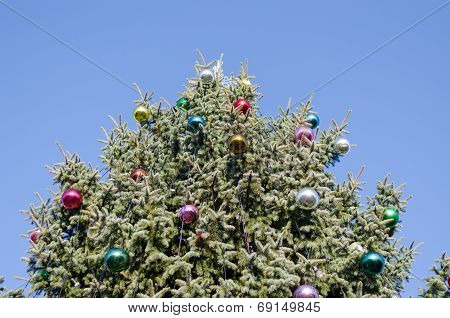 Christmas Tree Glassy Ball On Blue Sky Background