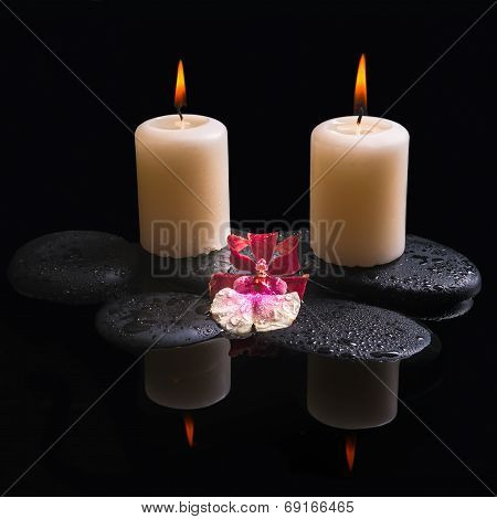 Beautiful Spa Setting Of White And Red Head Orchid (cambria), Candles On Zen Stones With Drops, Refl