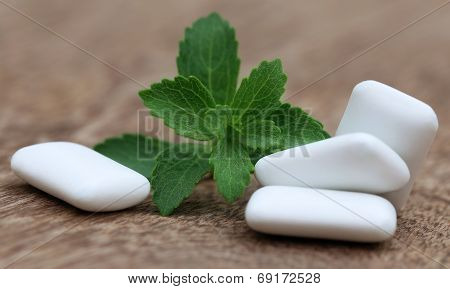 Chewing Gum With Green Stevia