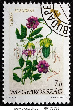 Postage Stamp Hungary 1991 Cathedral Bells, Flowering Plant