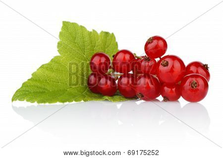 Photo Of Redcurrant With Leaf Isolated On White