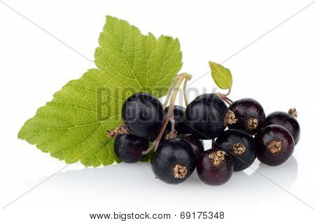 Photo Of Blackcurrant With Leaf Isolated On White