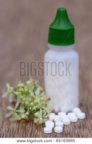Pills Made From Medicinal Neem Flower