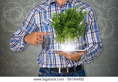 Man hold tablet pc with green tree