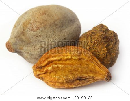 Triphala, A Combination Of Ayurvedic Fruits