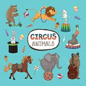 foto of guitarists  - Vector set of colorful circus animals with a central frame with text surrounded by a horse  balancing elephant  seal and poodle  leaping lion  bear on a scooter  rabbit in a hat  monkey guitarist - JPG