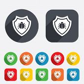 foto of shield-bug  - Shield sign icon - JPG
