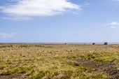 stock photo of falklands  - 4X4 Safari in the Falkland Islands - JPG