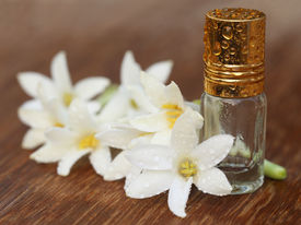 picture of tuberose  - Tuberose or Rajnigandha of Southeast Asia with essence bottle - JPG