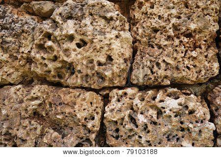 Coral Rock Wall