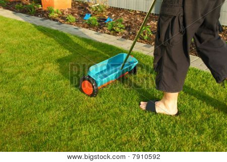 Gardening - Fertilizing Lawn
