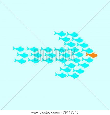 School Of Fish Swimming In Shape Of Arrow
