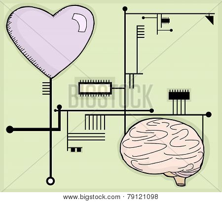 Heart And Mind Circuits