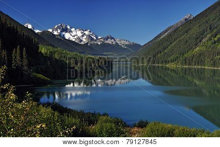 Beautiful green foliage by a mountain lake