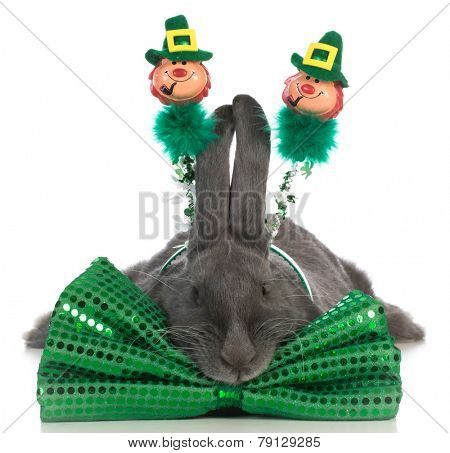 st patricks day bunny wearing green bowtie on white background
