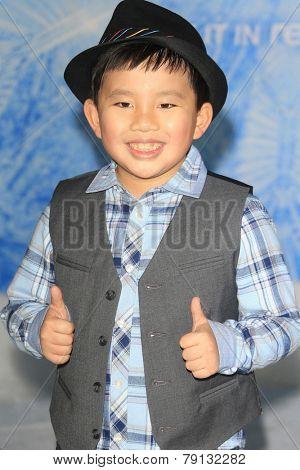 LOS ANGELES - NOV 19: Albert Tsai at the premiere of Walt Disney Animation Studios' 'Frozen' at the El Capitan Theater on November 19, 2013 in Los Angeles, CA