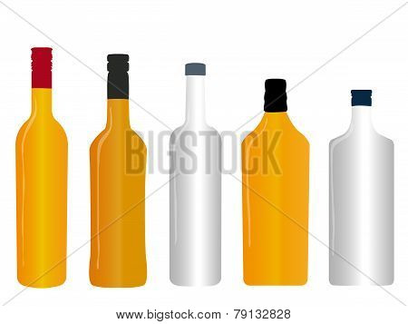 Different Kinds Of Spirits Empty Bottles