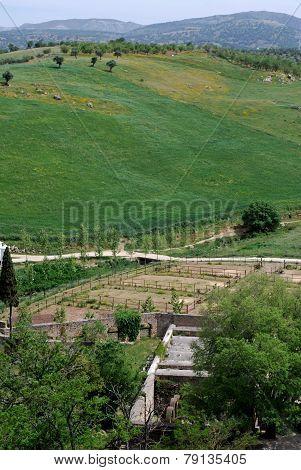 Spanish farmland, Ronda.