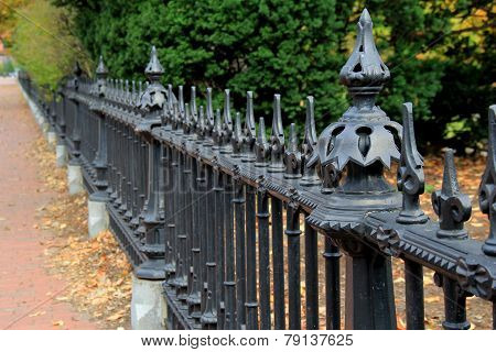Black, wrought iron fence