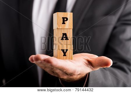 Businessman Holding Wooden Alphabet Blocks Reading Pay